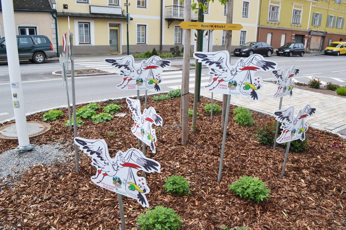 Raben als humorvolle Geburtsanzeigen in Rabenstein