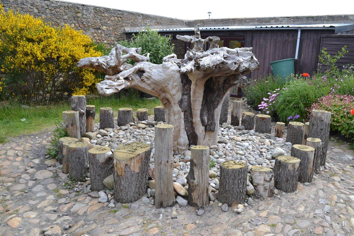 Baumwurzelskulptur im Garten des Delfin-Zentrums