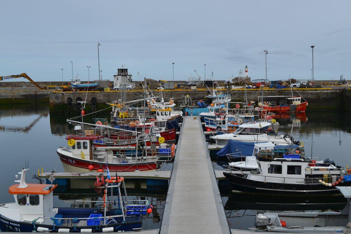 Fischerboote im Hafen von Fraserburgh