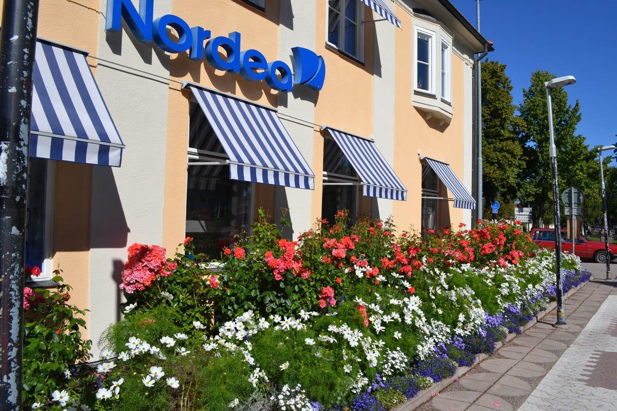 Prachtvolles Blumenarrangement vor einer Bank