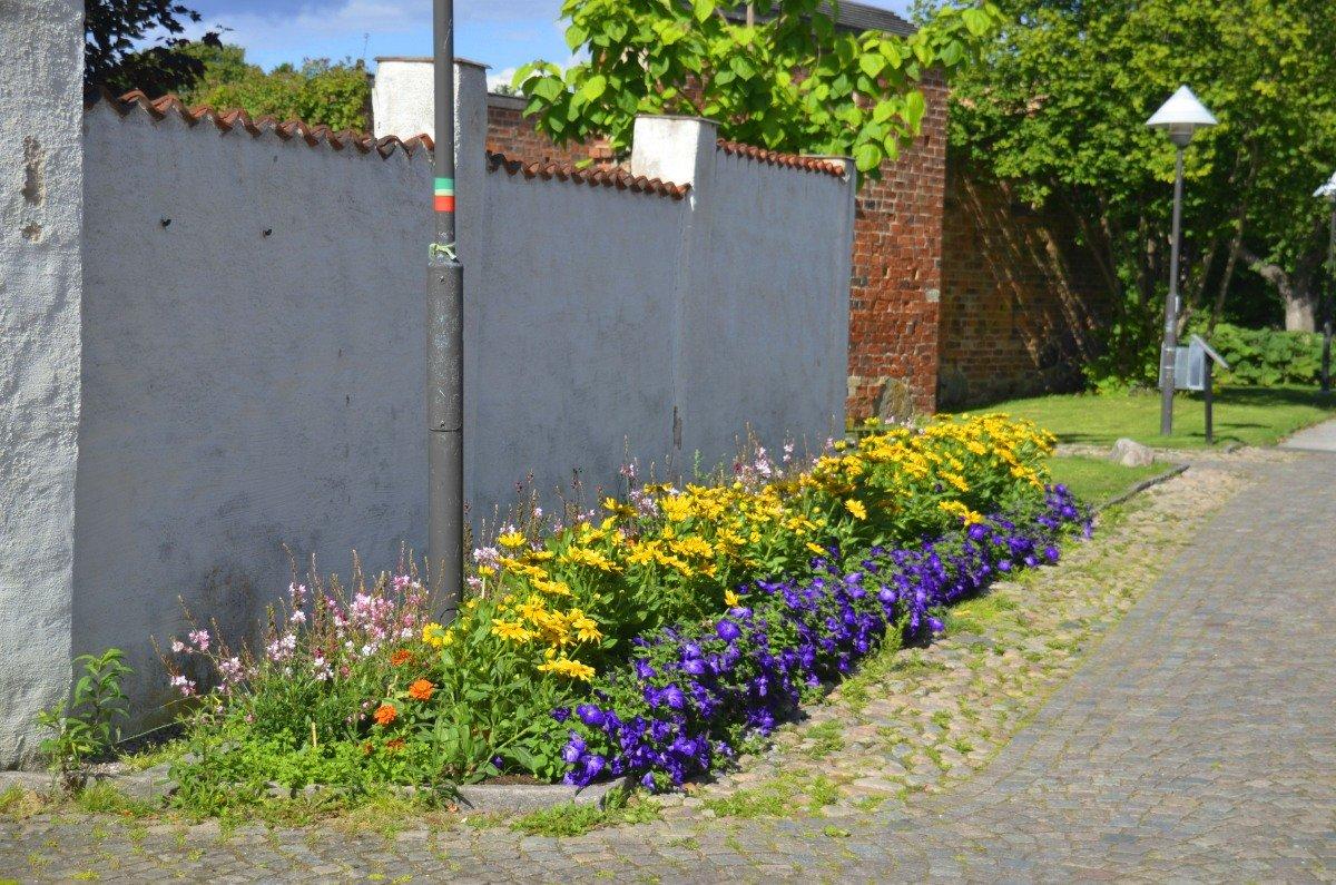 Blumenpracht in Åhus