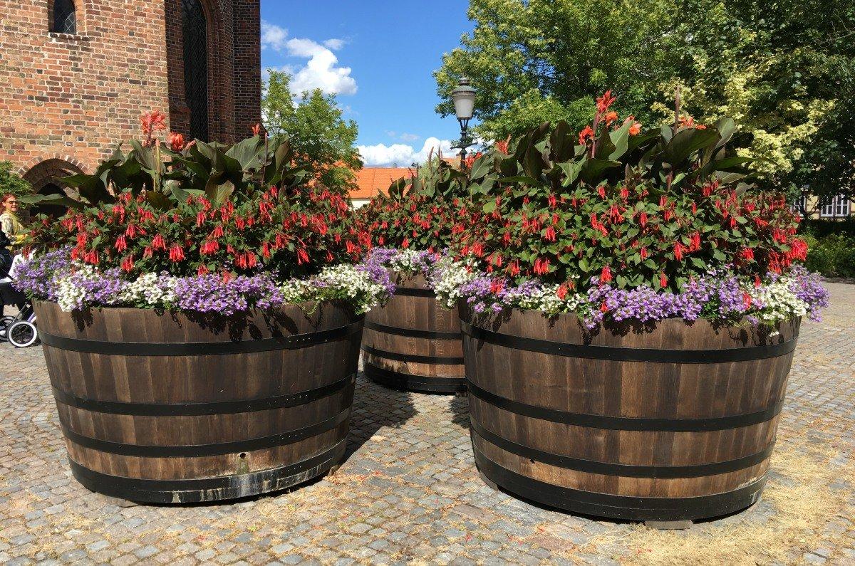 Blumentöpfe vor dem Kloster