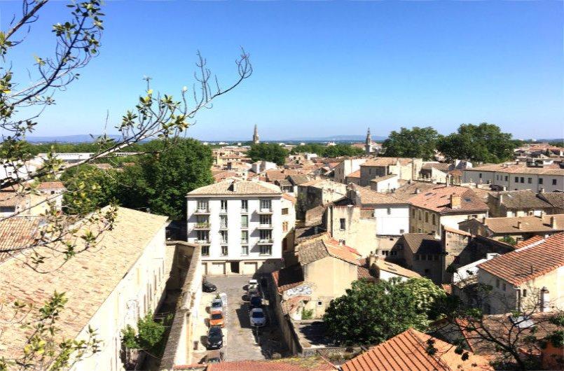 Avignon Altstadt