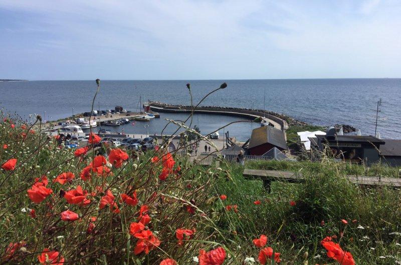 Der kleine Kåseberga Hafen