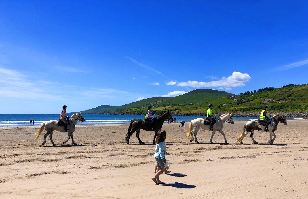 Auch Pferde dürfen hier an den Strand