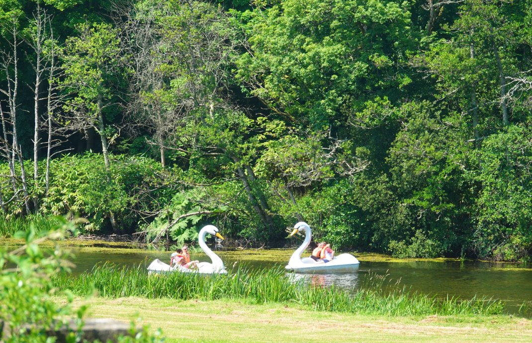 Schwanentretboote im Westport House Park