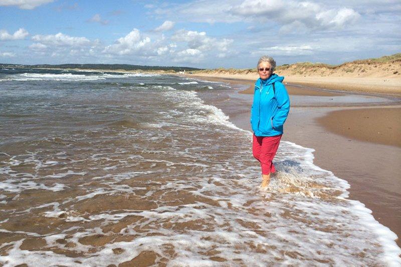 Vom Winde verweht am Strand von Tylösand