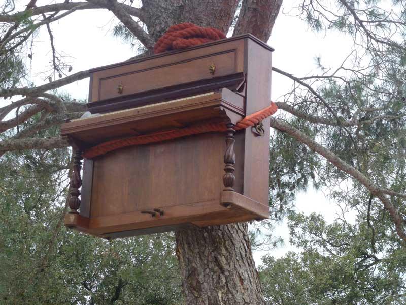 Hier wachsen Klaviere an Bäumen
