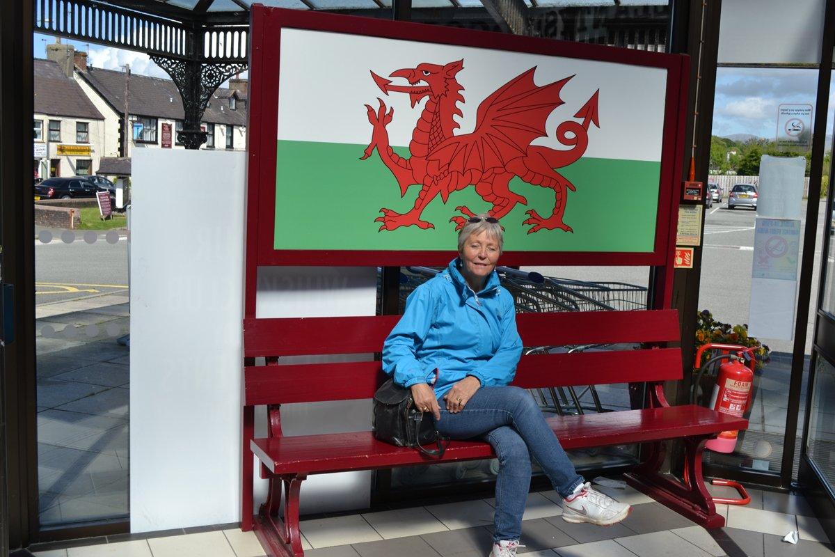 Anne mit dem Waliser Drachen