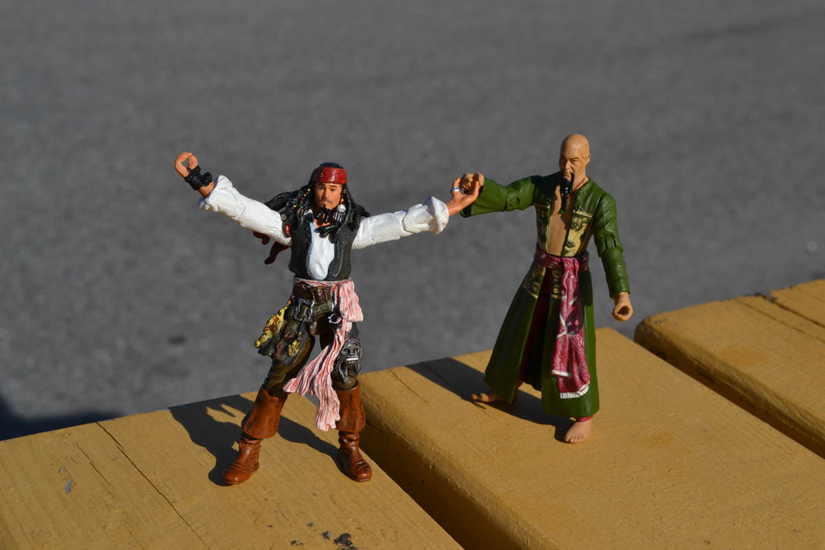 Captain Sparrow and friend