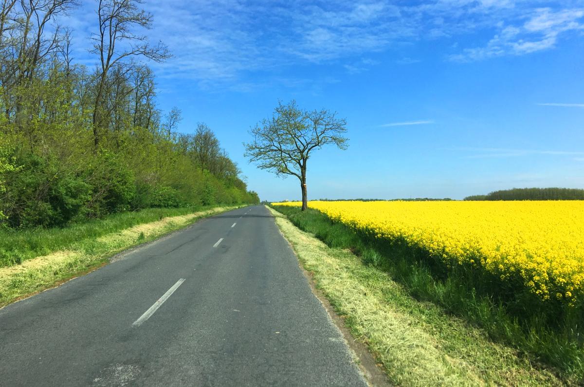 Fahrt durch die schöne tschechische Landschaft-4
