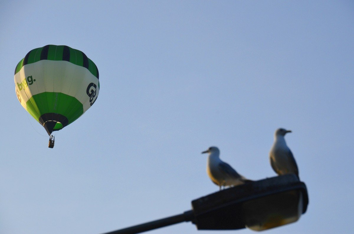 Heißluftballon und Möwen