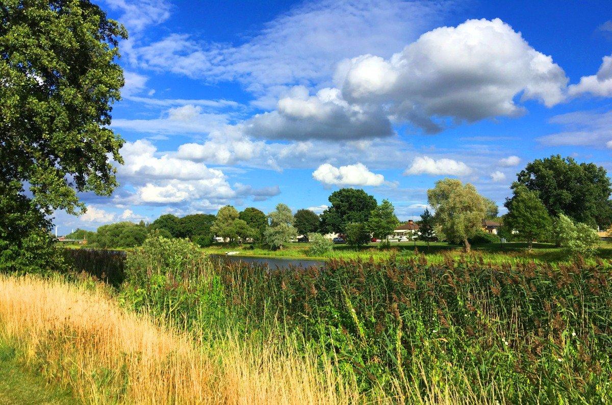 Blühende Flusslandschaft in Arboga
