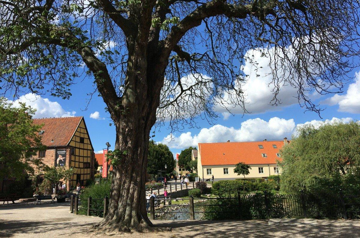 Klosterhof und Klosterteich