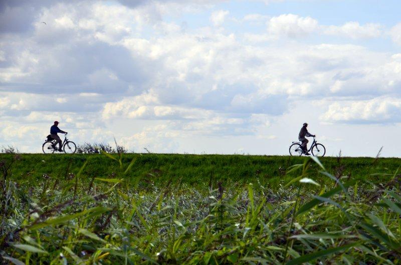 Radfahrer auf dem Deich an der Geltinger Bucht