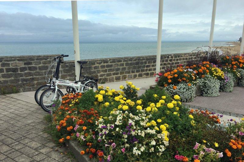 Unsere Fahrräder, fast verdeckt von eine Blumenpracht