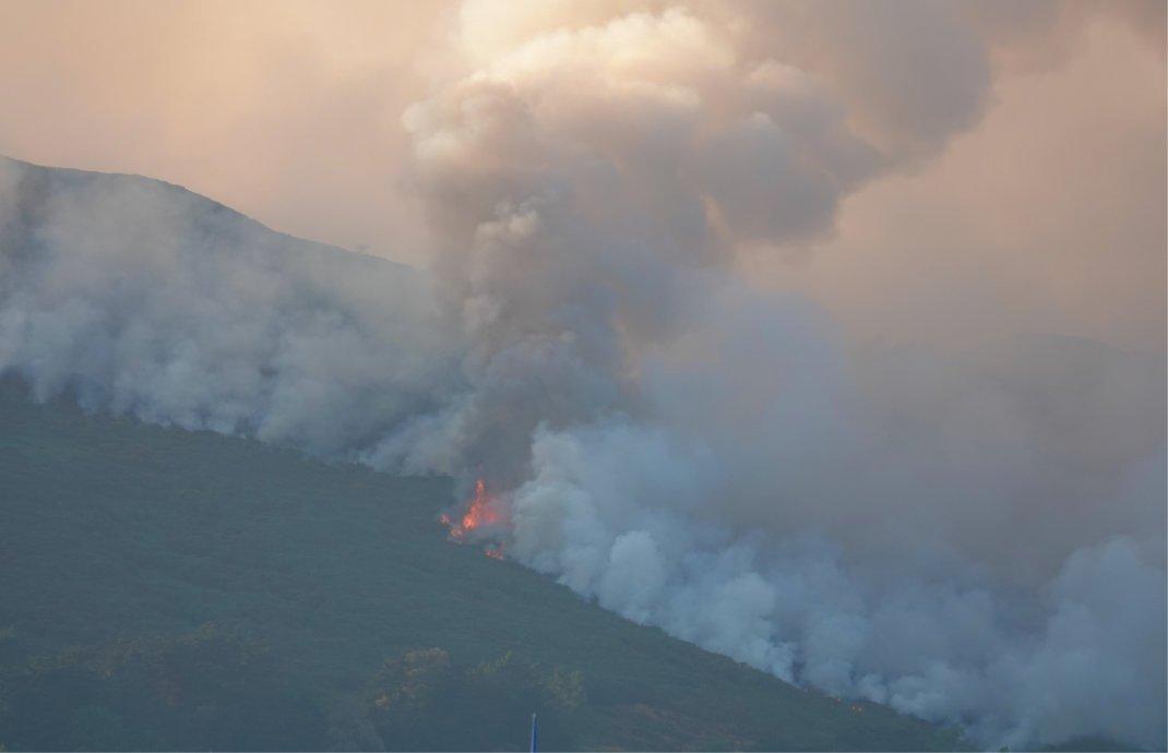 Der Waldbrand in unmittelbarer Nähe