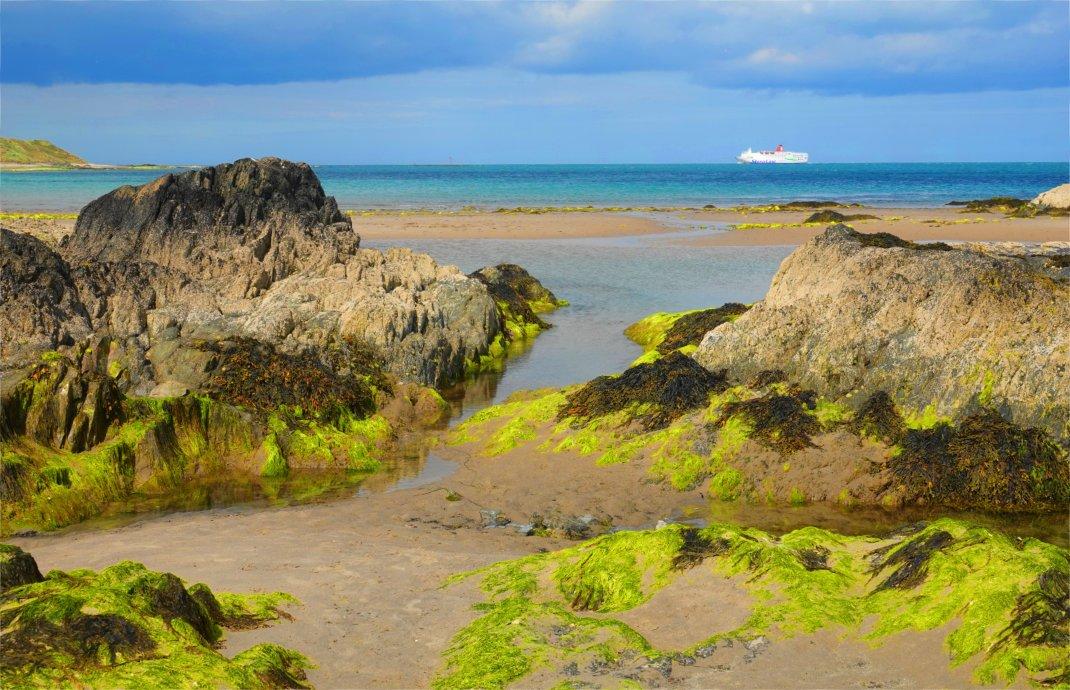 Strandabschnitt in St. Helens Bay