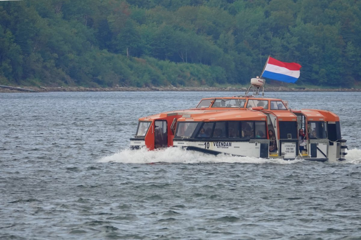 Tenderboot des Kreuzfahrers Veerendam