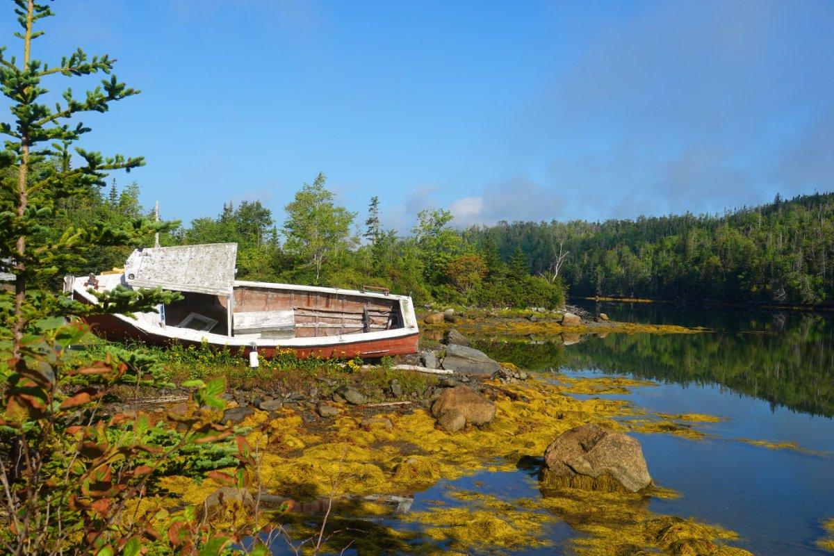 Der Salmon River, Jeddore
