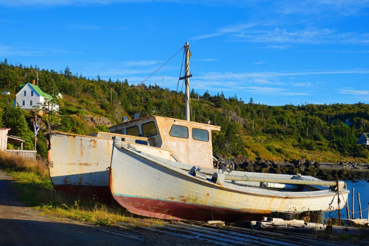 Whale Cove bei Digby