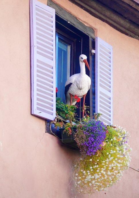 Urige Fenster-Deko