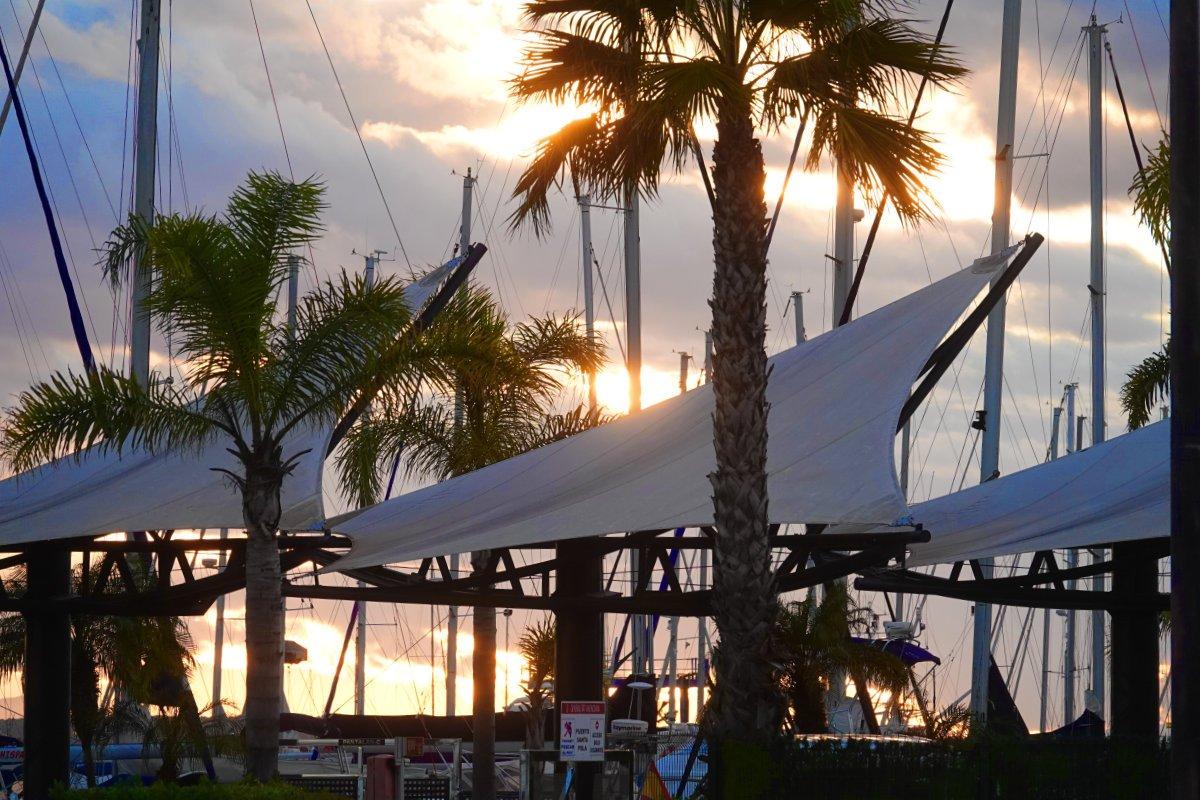 Abendlicht im Hafen von Santa Pola