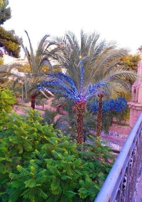 Dekorierte Palmen