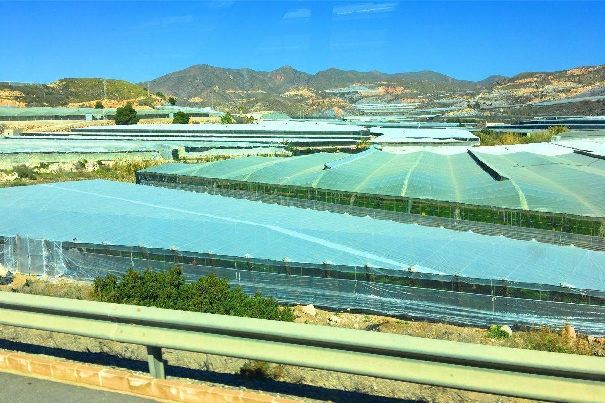 Plastikmeer Andalusiens