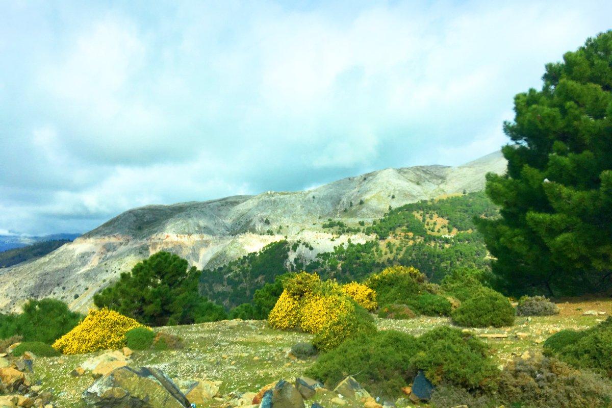 Gebirgslandschaft Serranía de Ronda