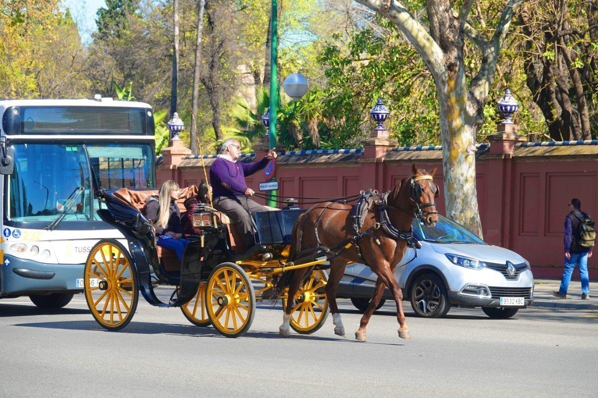 Vom Verkehr umtoster Fiaker