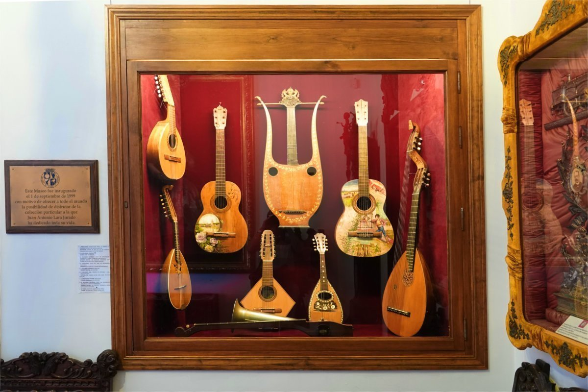Zupfinstrumente im Museum
