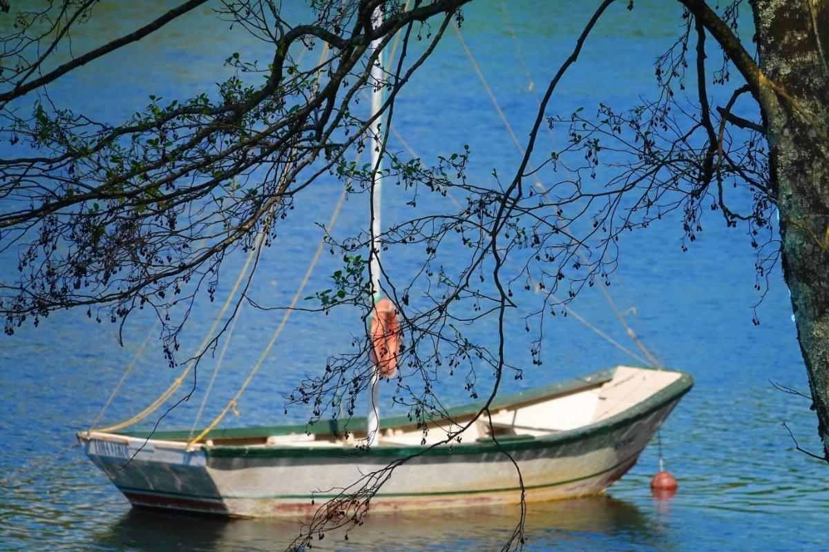 Boot im Fluss