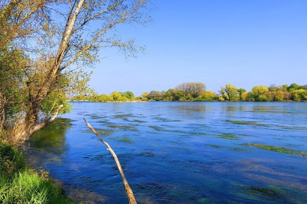 Die Loire bei La Chappelle-Saint-Mesmin