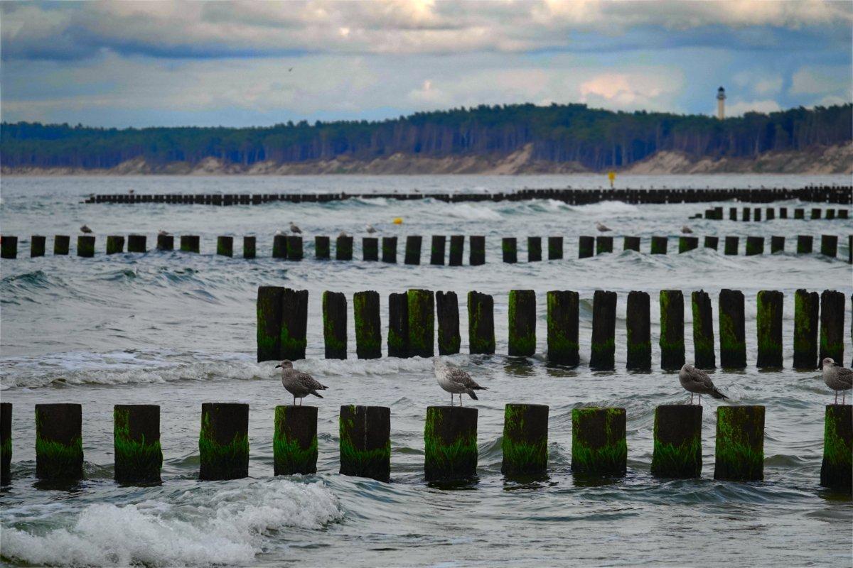 Buhnen-geschützter Strand
