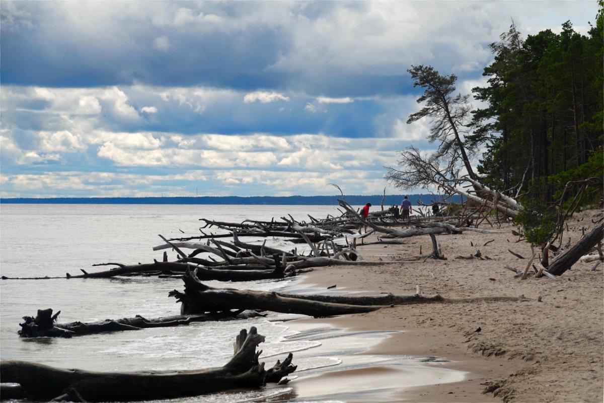 Küstenerosion an der Rigaer Bucht