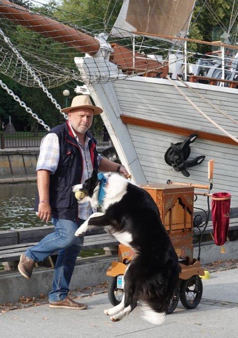 Leierkasten-Hund Show