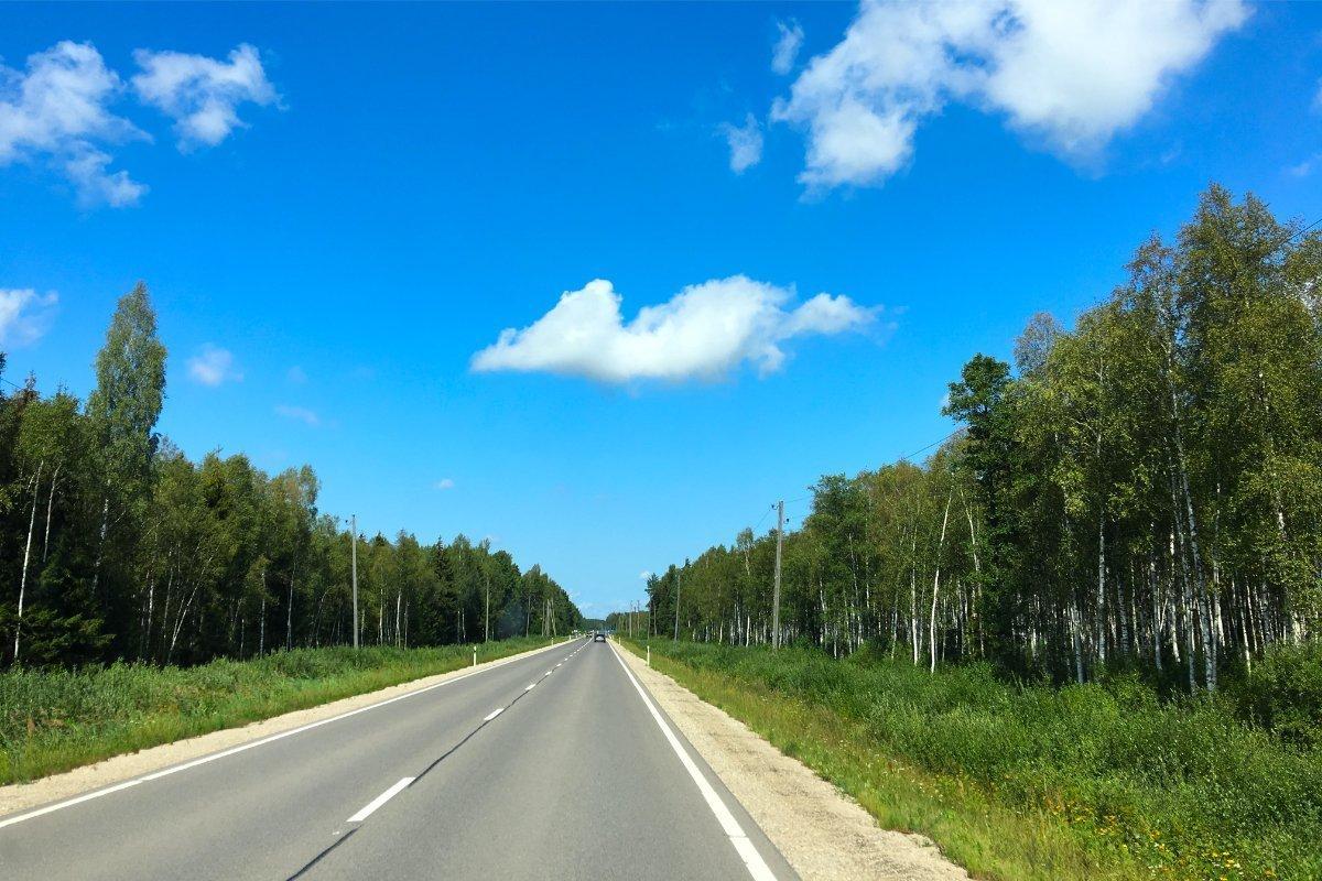 Schnurgerade Straße durch den lettischen Wald