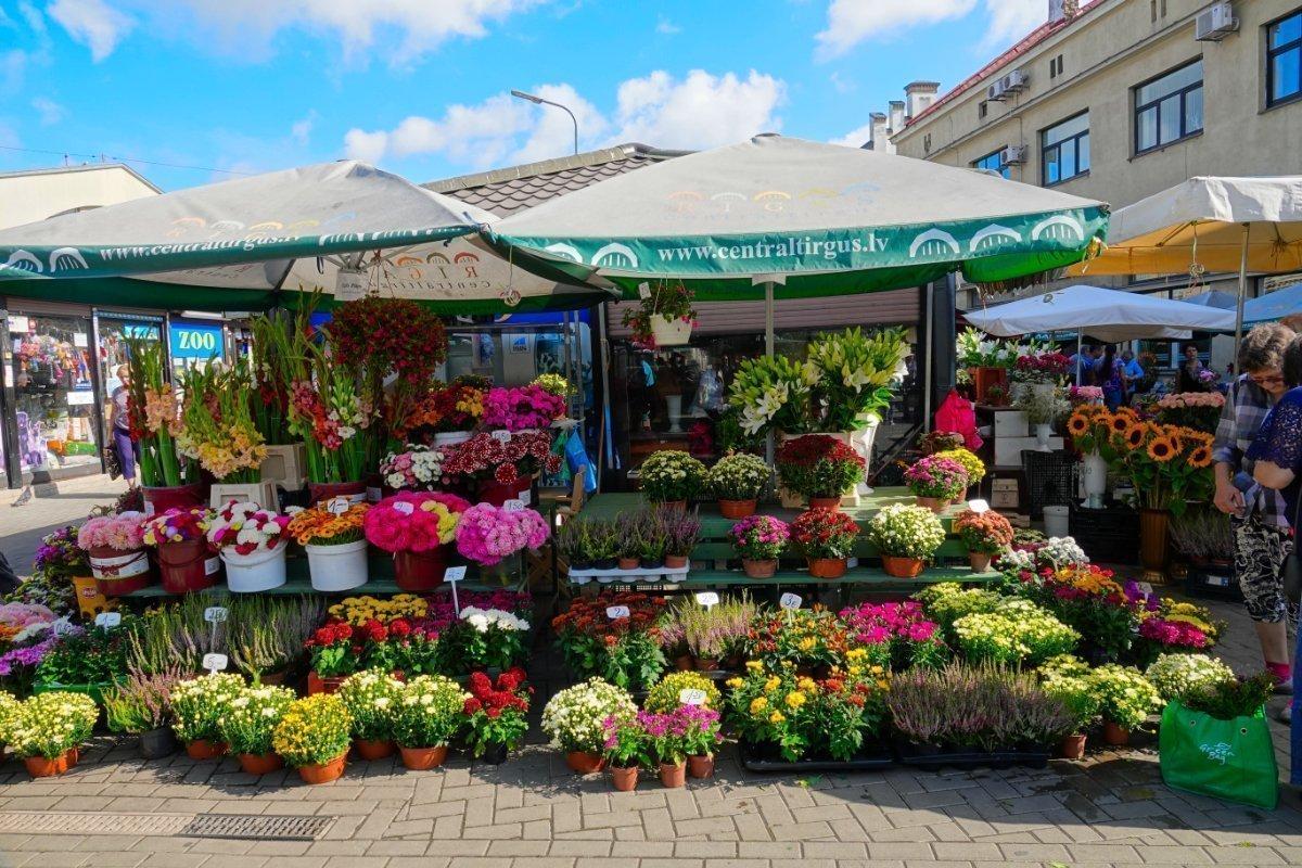 Tolles Blumensortiment im Angebot