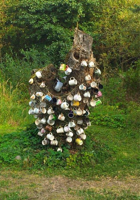 Tassen am Baumstamm