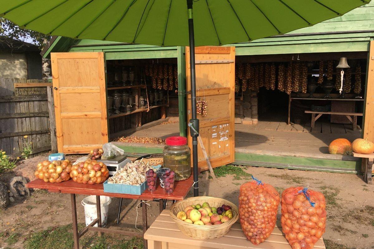 Zwiebeln, Knolsuch, eingelegte Gurken und Samovars