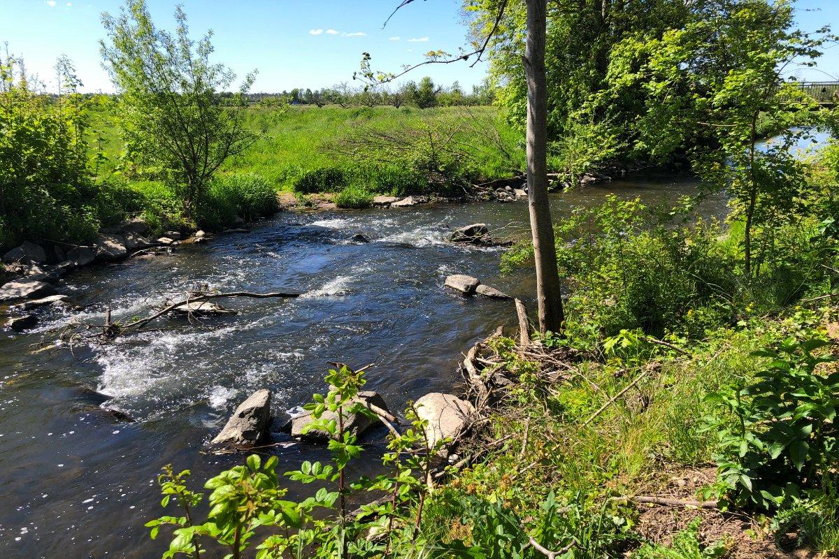 Der Fluss Kahl zwischen Alzenau und Kahl