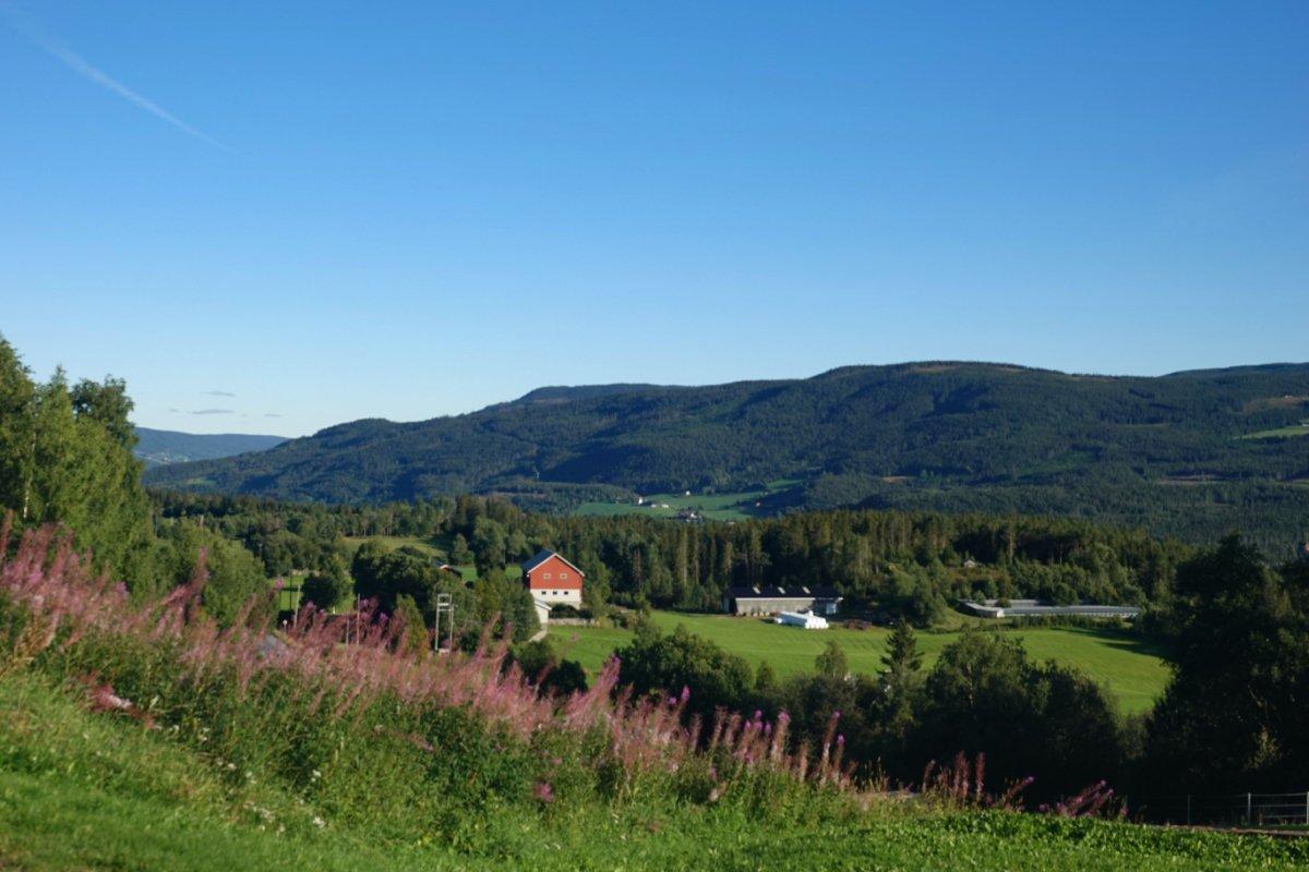 Ländliches Norwegen