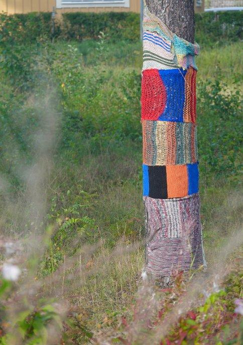 Hobby der Schweden. Strümpfe stricken für Bäume